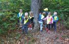 28.10.2019 – C6 – Sprehod v gozd